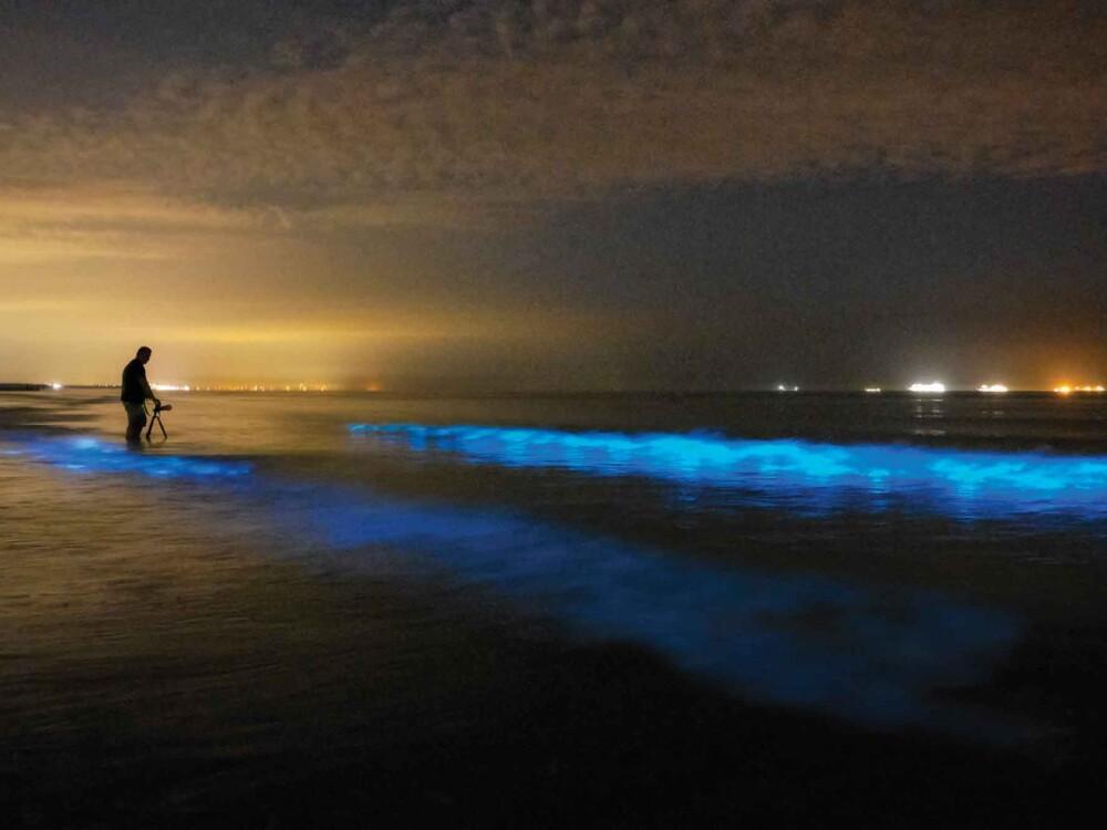 Meeresleuchten IStock Getty Images Groß